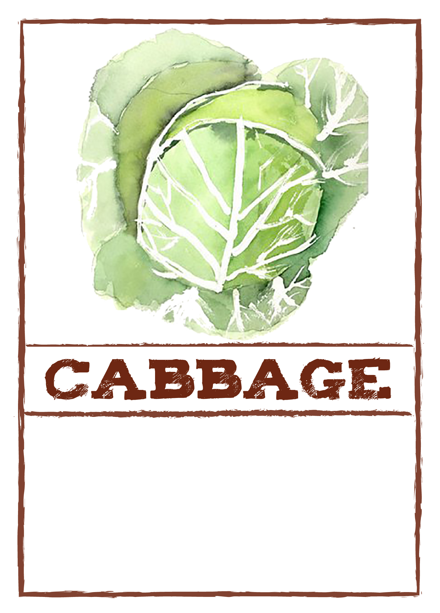 cabbage-sign-01